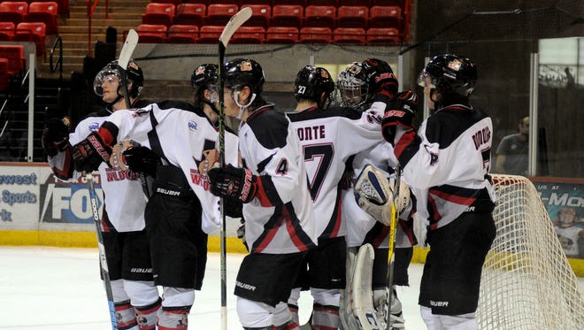 Wichita Falls Wildcats celebrate their goal tying the game at 3-3 in the playoff game against the Lone Star Brahmas Friday, April 21, 2017, in Kay Yeager Coliseum. The Brahmas ended the Wildcats season with a 4-3 win that also marks the end of the team in Wichita Falls.
