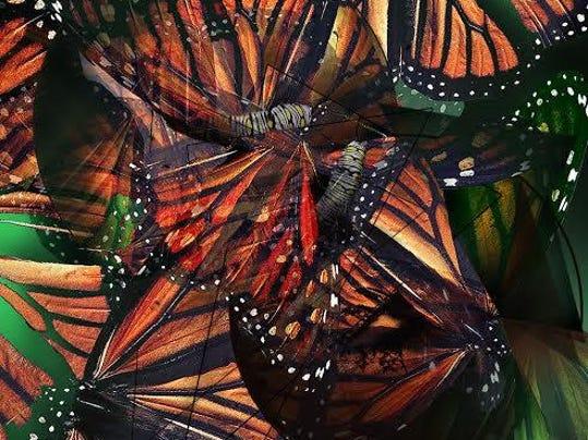 Stan Maples Digital Print Metamorphosis