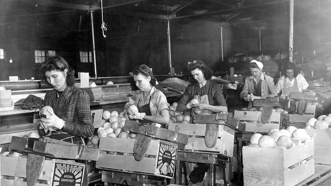 Women circa 1940 pack citrus at Arizona Citrus Growers in Phoenix, near Seventh Street and Jackson. There are no more packing facilities in the Valley; the last closed in 2010.