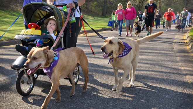 Gavin Nichols, 1, Clearwater, enjoys the surroundings as his mom, Jackie, and dogs, Cami, left, and Ginger, take part in the first Bark for Life walk Saturday morning in Wilson Park. The event recognizes the role animals, especially dogs, play in the role of helping people with cancer to recover.