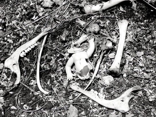 """""""Road Kill: Deer Baby"""" is a black-and-white gelatin"""