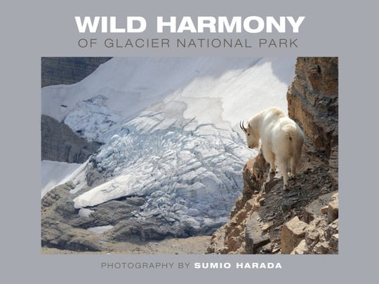 """""""Wild Harmony of Glacier National Park,"""" Sumio Harada's recent book published in 2016, took 8 years to compile the images he needed to highlight the unique ecosystem of the mountain goat."""