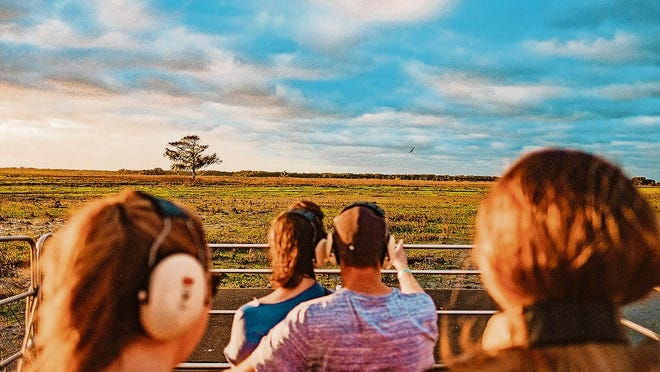 Get a unique viewpoint of Central Florida wildlife on an airboat ride in Kissimmee's waterways.