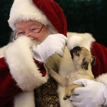 Dogs visit Santa at Arizona Mills in Tempe