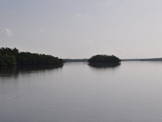 The mushroom-shaped mangrove island in the center is typical of the type of island that birds favor as rookeries for nesting.