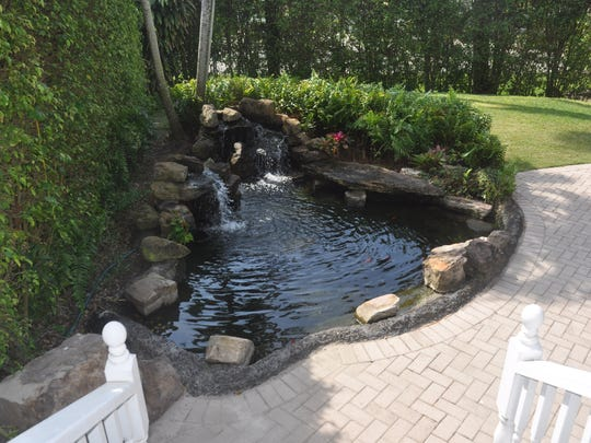 There is a pool and a koi pond in the backyard.
