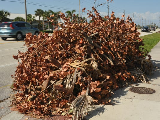 Yard waste along A1A