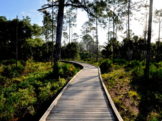 The Withlacoochee Gulf Preserve offers some of the