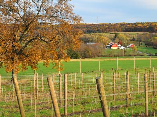 Unionville Vineyards.