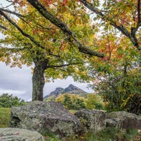 Sept. 30: Despite this week's heavy rain, leaves are holding fast on Grandfather Mountain, as this photo from MacRae Meadows demonstrates. Experts posit that the recent bout of wet, warm weather could prolong the 'leaf season.'