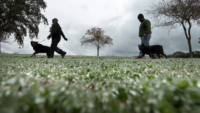 Lisa and Jake Herring walk their dogs around South Pope Park on Feb. 4, 2011, past ice-covered grass.
