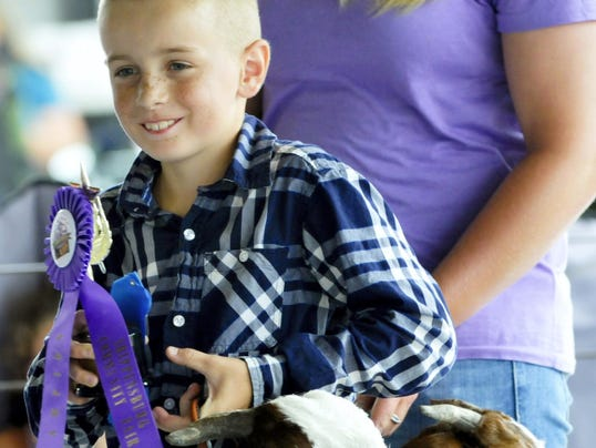 Blake Nisewander, 8, Greencastle, won grand champion and a host of other awards with his goats Olaff and Sven Monday at the 2014 Shippensburg Community Fair.