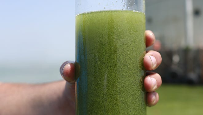 In this Aug. 3, 2014 file photo, a sample glass of Lake Erie water is photographed near the City of Toledo water intake crib on Lake Erie, about 2.5 miles off the shore of Curtice, Ohio.