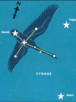"""The constellation Cygnus the Swan. The brightest star, Deneb, marks the tail. The star marking the swan's head is Alberio, a beautiful double star in a small telescope. Not the """"Northern Cross"""" shape.http://pachamamatrust.org"""