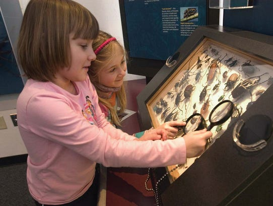 The Exploring Life exhibit is one of the exhibits at