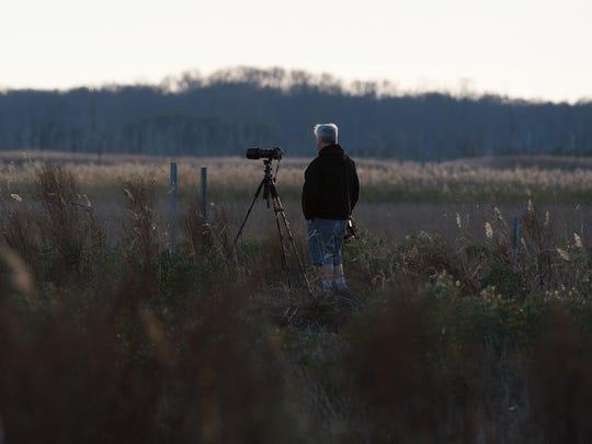 A bird-watcher at Prime Hook National Wildlife Refuge.