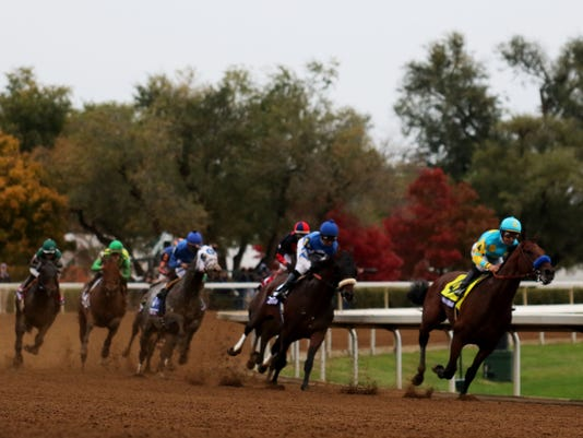 Horse Racing: 32nd Breeders Cup World Championships