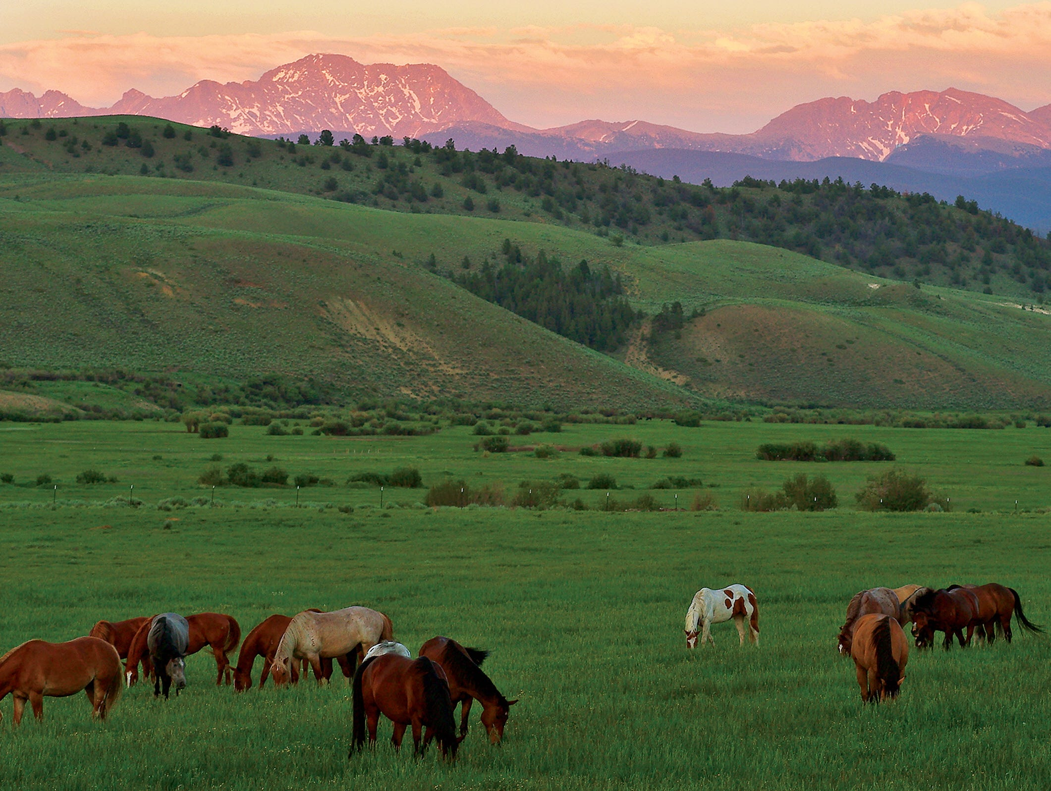 http://www.ranchland.com