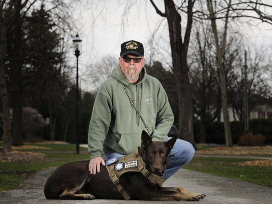 Requirements For Veteran Get A Service Dog