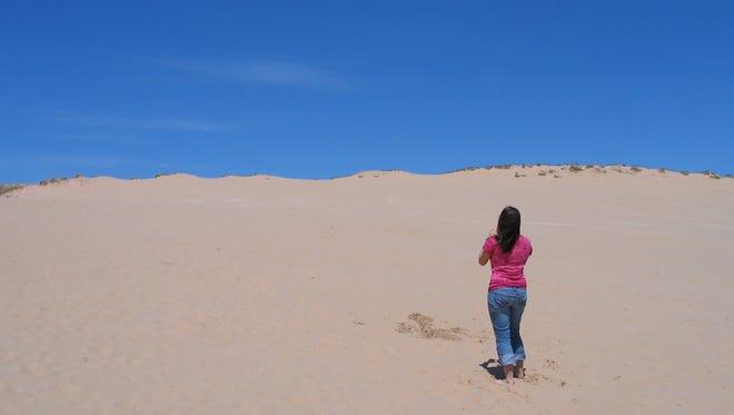 The Dune Climb is 110 feet high at  Lake Michigan at Sleeping Bear Dunes in Empire, Michigan.