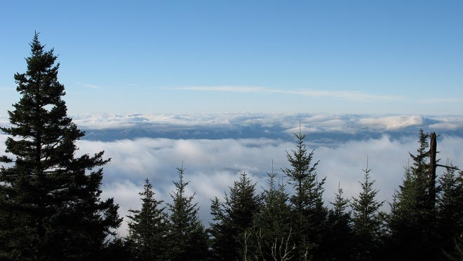A view from the Mountains-to-Sea Trail at Clingmans Dome in the Great Smoky Mountains National Park. The nation's most visited national park with some 11.3 million annual visitors, the Smokies is lacking is basic safety equipment, including hand-held radios.
