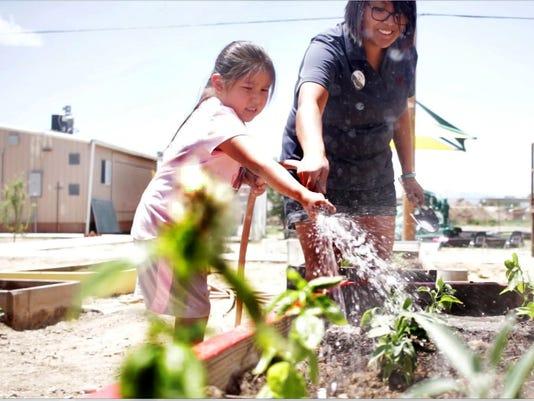 636320255681057539-Yeego-gardening-project.jpg