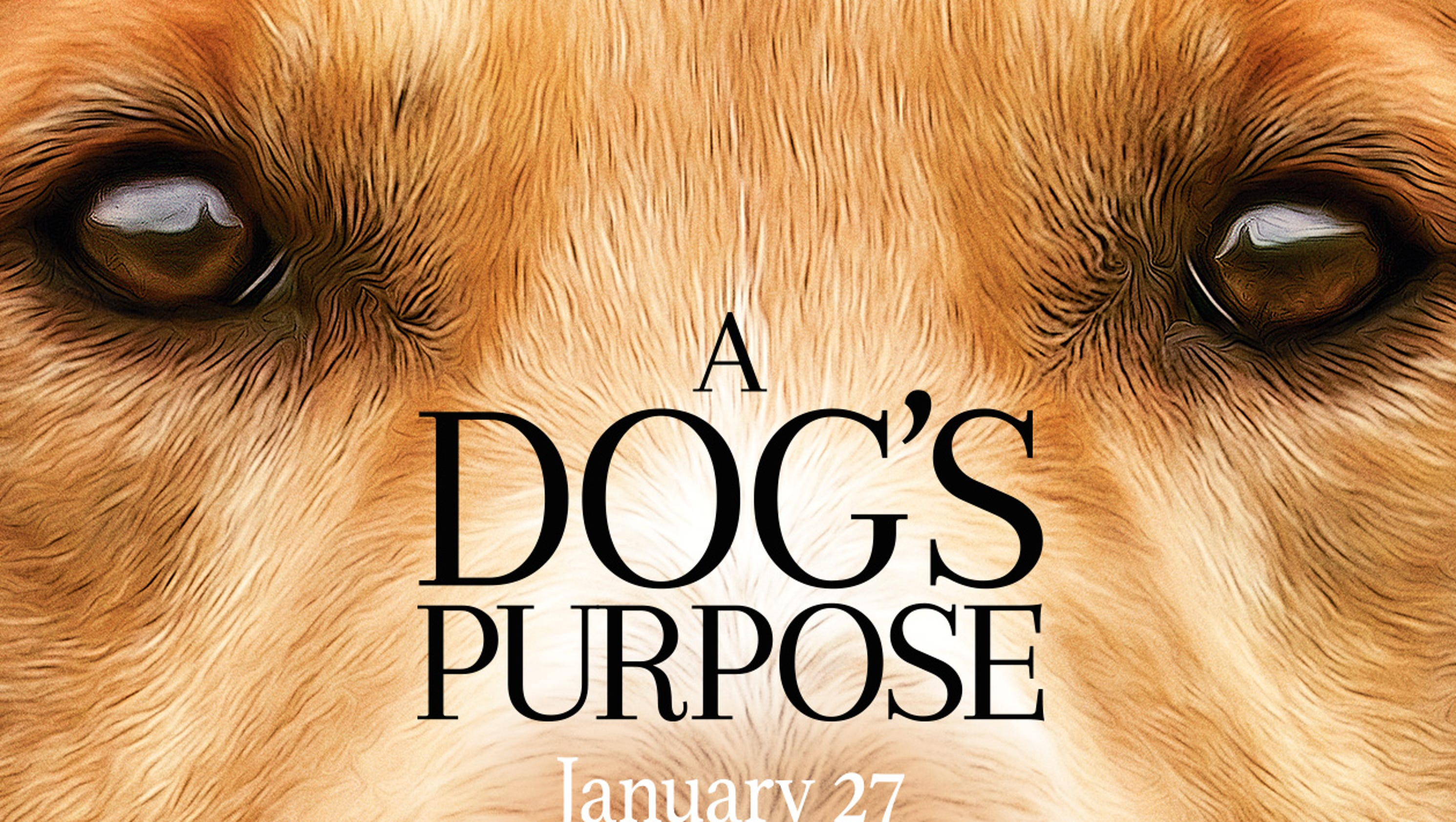 A Dog S Purpose Peta