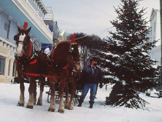 One Horse Open Sleigh You Can Do That In Michigan