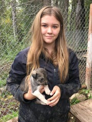 Hannah Mahoney with future Iditarod champion at Wade Marr's Stump Jumping Kennel in Willow, Alaska in August 2016. Hannah is leasing her team from, and training with Wade.