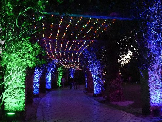 Annual Night Lights in the Garden creates twinkling holiday magic