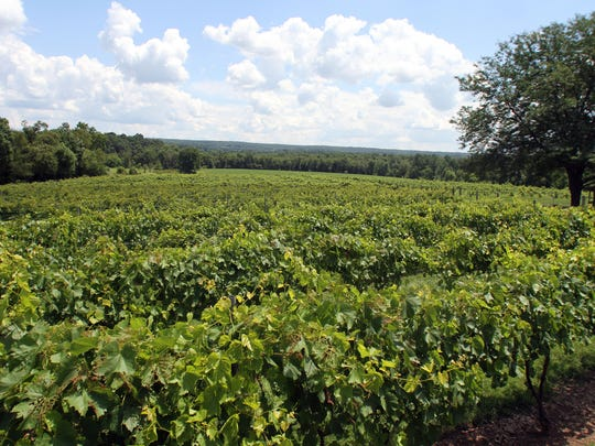 Old York Cellars in Ringoes is set amid some of the oldest vineyards in New Jersey.