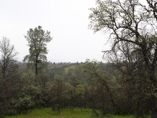 The city proposes to turn the Oregon Gulch area in south Redding into open space.