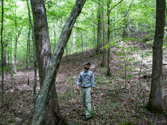 April 26, 2017 - Hunt Treadwell identifies trees near a small stream that runs on the unspoiled 810-acre tract of land less than 45 minutes from East Memphis. Located north of Moscow, in Fayette County, the tract of land is one of about 20 statewide targeted for protection through a proposed Water Conservation Fund sought by a coalition of 56 conservation and civic groups from across Tennessee.ÊThe coalition, Forever Green Tennessee, is calling on state legislators to approve a budget amendment providingÊ$25 million to conserve forested corridors for cleaner water.