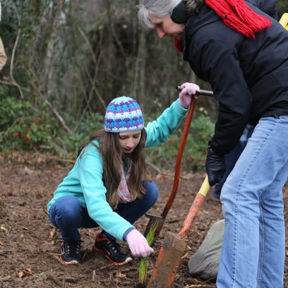 Arbor Day tree planting will be at Layfette Park this