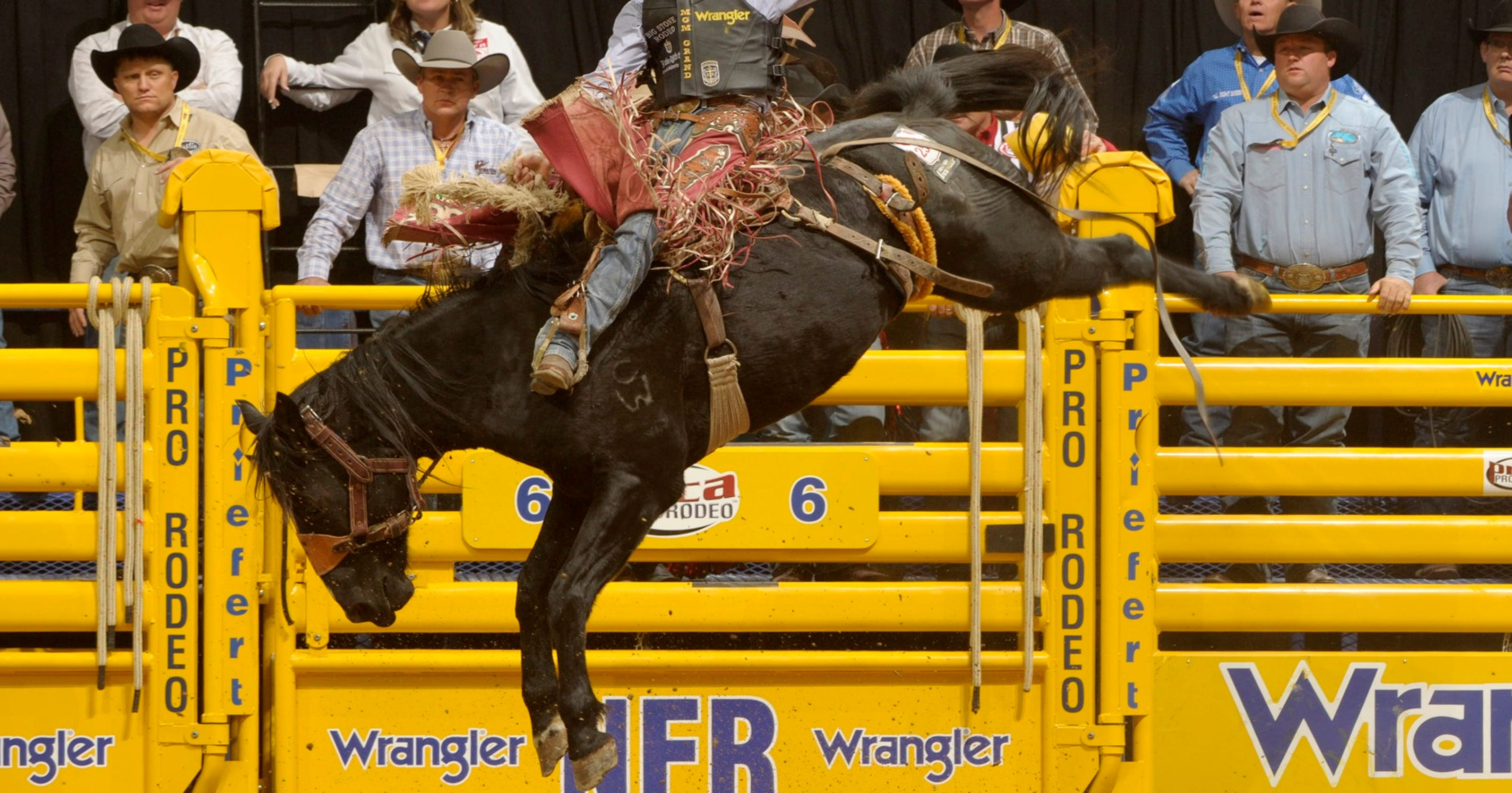 Who's in, who's out: Utah cowboys ride for NFR