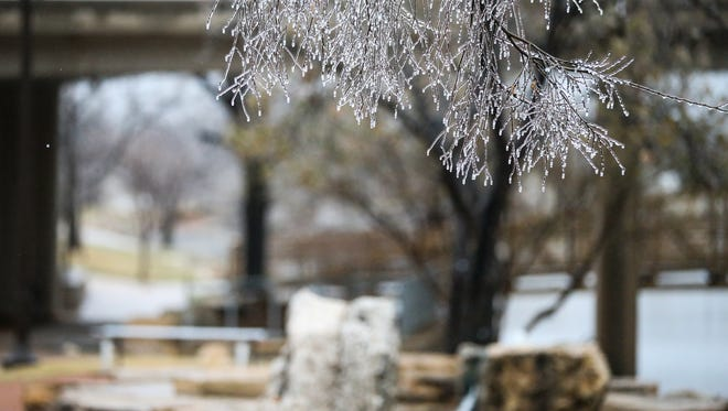 Hoarfrost covers vegetation along the Concho River Wednesday, Feb. 21, 2018, in San Angelo.