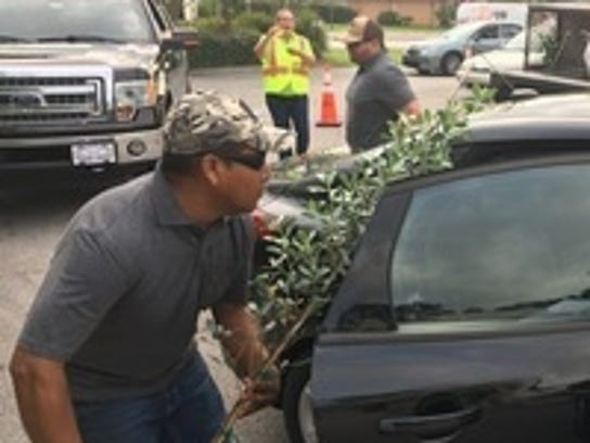 The City will give away an assortment of 500 trees