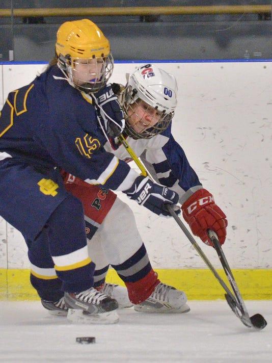 CPpenguinshockey0107-2