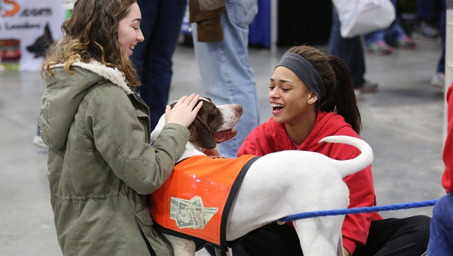 Mackenzie Paszkiewicz, 15, left, and Nadia Shimon, 15, pet Cash, a German Shorthair Pointer, with German Shorthair Pointer Rescue of Wisconsin, at the Great Lakes Pet Expo in 2016. This year's event will be held Saturday, Feb. 3, at the Wisconsin Expo Center at State Fair Park.