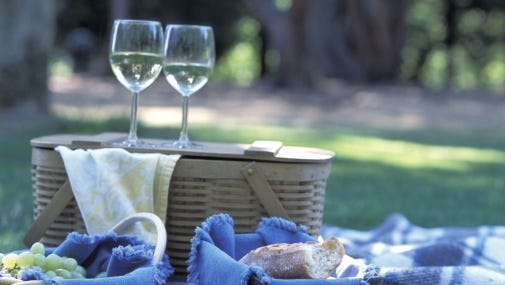Appleton could require anyone who wants to have a picnic in a city park with wine or beer to get a permit.