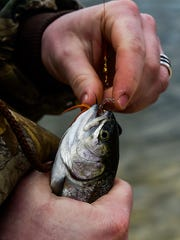 An angler removes the hook from a trout.