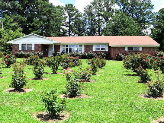 Over 250 rose bushes are planted outside the home of