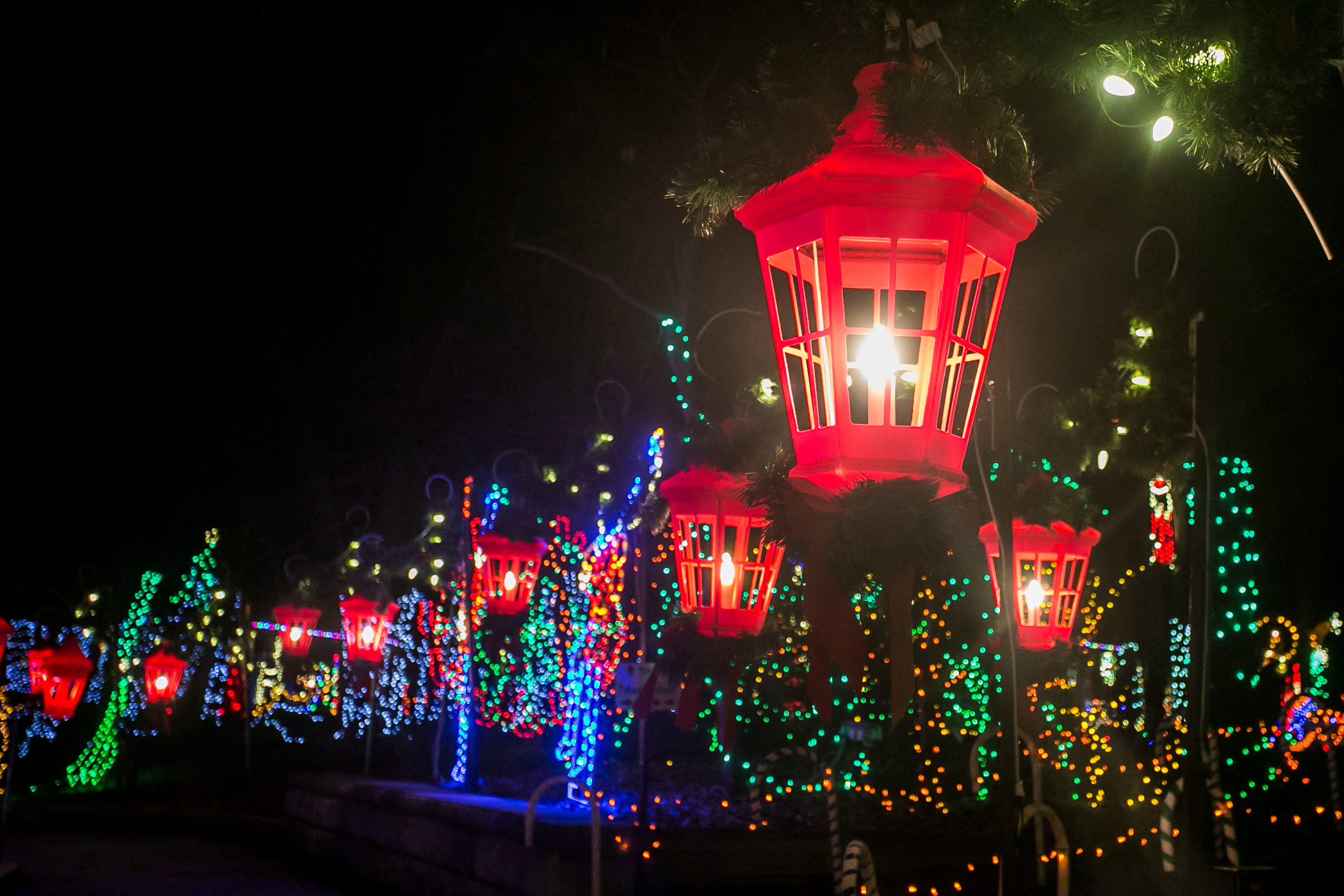 magic nights of lights coupon