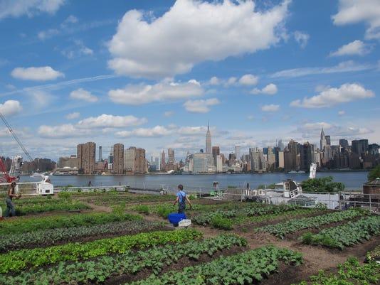 Eagle-Street-Rooftop-Farm-Annie-Novak-Rooftop-Growing-Guide-2.jpg