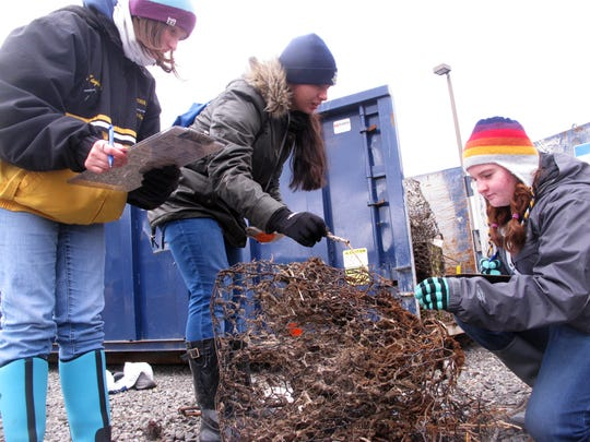Kayla Johnston, from left, Hallie Lazaro, and Molly Robinson, students at New Jersey's Marine Academy of Technology and Environmental Science, examine and record a discarded crab trap that was retrieved from Barnegat Bay in Waretown, N.J. Efforts are under way around the world to remove discarded fishing equipment from waterways, where it can kill marine animals and present a hazard to navigation.