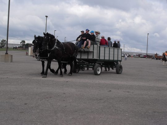 A common sight on the MEC grounds was horse-drawn wagons