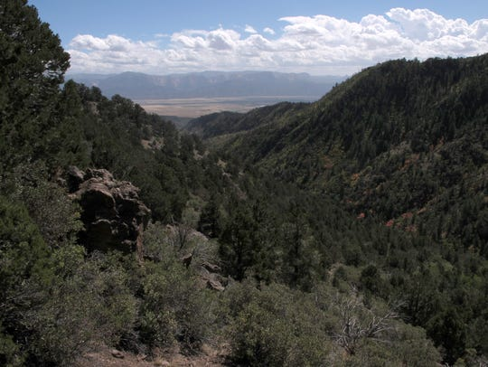 Looking down the canyon from the Comanche Trail one