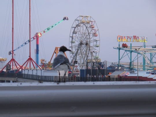 """In this July 20, 2013 photo, a seagull sits on a railing on the Atlantic City, N.J. Boardwalk, with the historic Steel Pier in the background. A report released April 10, 2014 by the Atlantic City Alliance found that the second year of the """"Do AC"""" advertising campaign in 2013 helped improve perceptions of Atlantic City in other northeastern U.S. cities."""