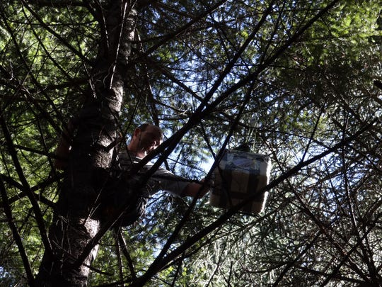 Jon Lahey is within reach. Retrieving a weather balloon from a tree in the woods near Estacada; a final part of a school project which involved raising a weather balloon a part of a lesson on weather. Laurie Taitano's fifth-grade class tutored younger Turner Elementary School students during a Science Day project on May 3.