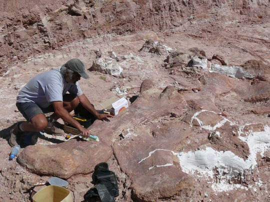 Excavation of Patagotitan fossils on the La Flecha
